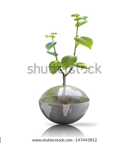 green plant on Earth,globe  - stock photo
