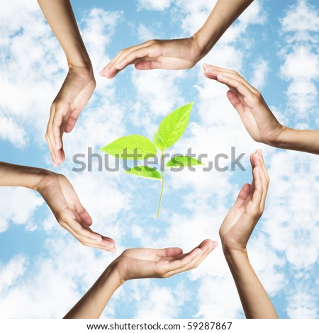 green plant surrounded by hands over blue sky - stock photo