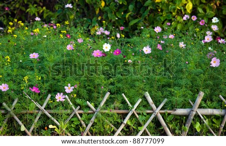 green plants and colorful flowers behind bamboo fence. - stock photo