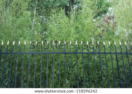 green plants behind fence closeup