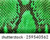 Green  python  leather, skin texture for background. - stock photo