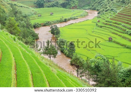 Green Rice fields on terraced in Mu cang chai, Vietnam