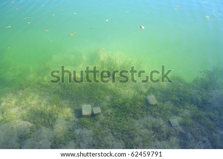 green river bed with moss and stones - stock photo