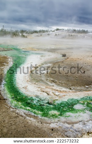 Green river in Norris Geyser Basin. Yellowstone  National Park - stock photo