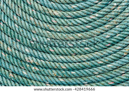 Closeup On Fish Skin Blue Siamese Stock Photo 23635597