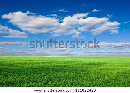 green rural fields