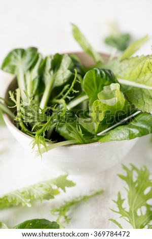 Green salad in white bowl white background