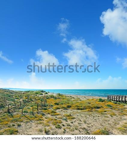 green shore under clouds in Platamona beach, Sardinia - stock photo