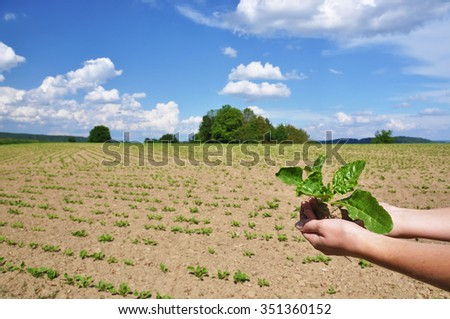 Green shots in the hands - stock photo