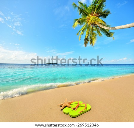 Green slippers and starfish at tropical golden sand beach -- Tropical beach vacation and travel concept   - stock photo