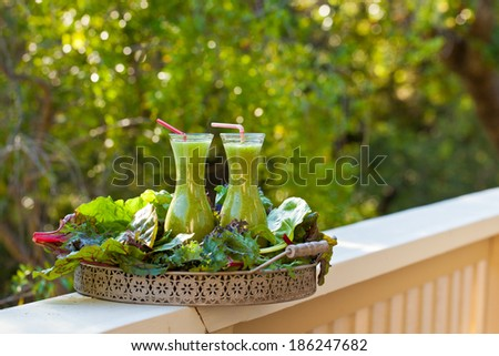 Green smoothie in two glass bottles on a fence. Also available in vertical format.  - stock photo