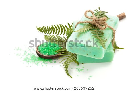 Green soap and fern leaves. Isolated on white background. - stock photo