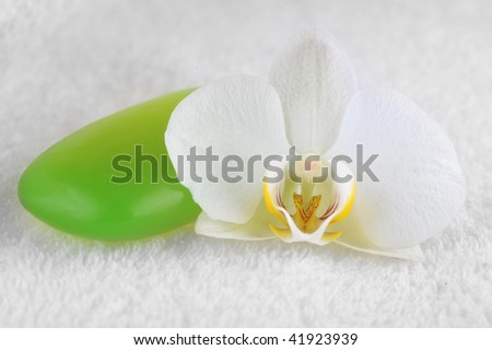 green soap and orchid close up - stock photo