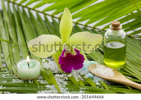 Green spa with orchid and candle ,salt on leaf