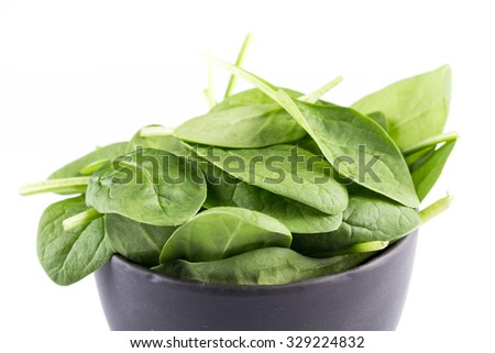 Green spinach leafs on a white background
