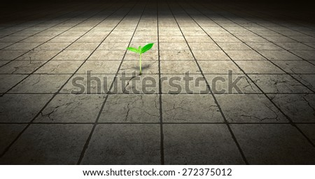 Green sprout growing out of concrete floor - stock photo