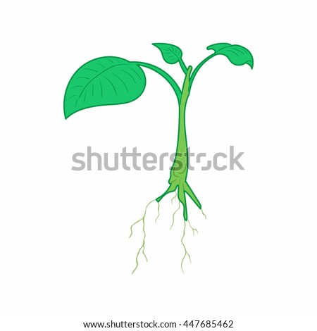 Green sprout icon in cartoon style on a white background