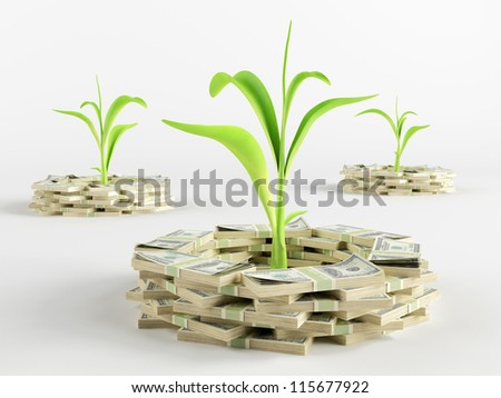 Green sprout surrounded by a stack of money - stock photo