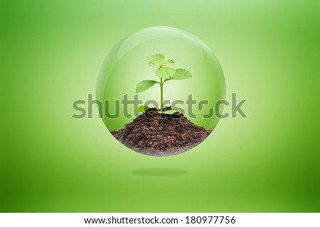 Green sprout with soil inside glossy ball - sustainable development & conservation concept - stock photo
