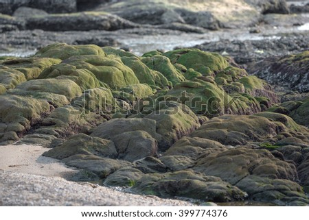 Green stones in the sand, nature background