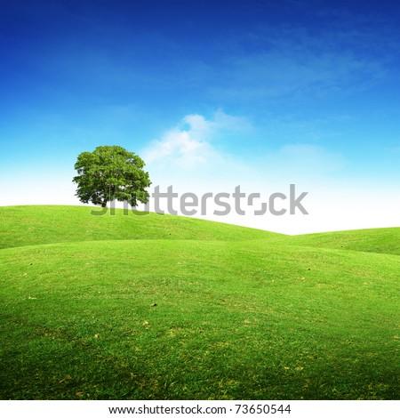 Green summer landscape scenic view. - stock photo