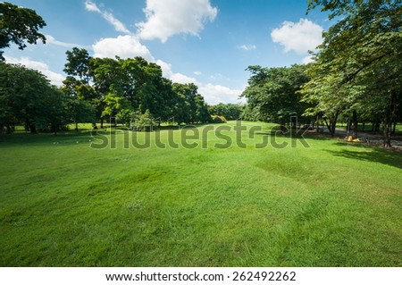 Green summer park garden with blue sky. - stock photo