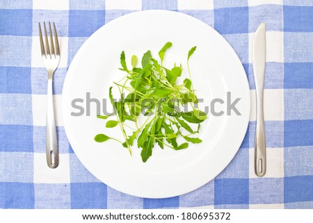 Green Summer Salad on White Plate - stock photo