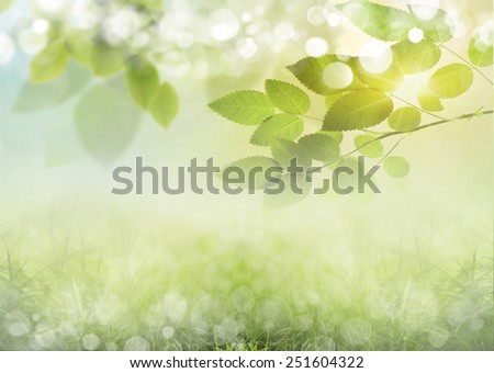 Green, sunny natural background - stock photo