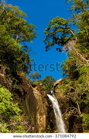 Green Surrounding Natural Magic  - stock photo