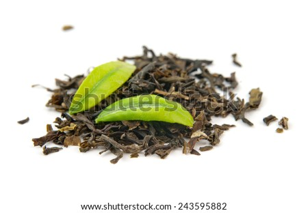 green tea and leaves is isolated on a white background - stock photo