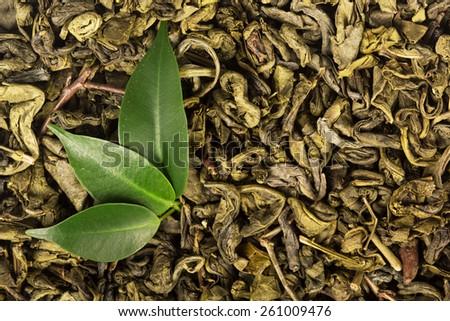 Green tea background - stock photo