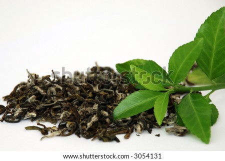 Green tea leaves - stock photo