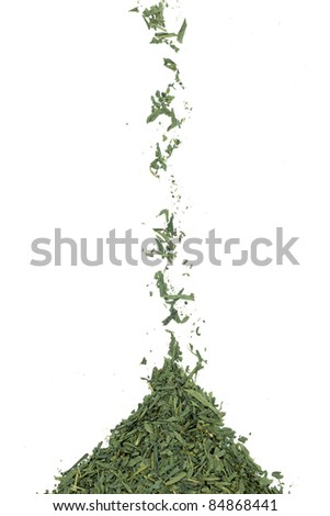green tea leaves isolated on white background - stock photo