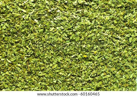 Green tea mate - stock photo