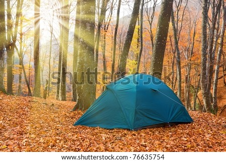 green touristic tent in a autumn forest at the morning - stock photo