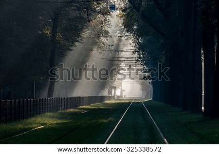 Green tramway in tree alley, in the morning mist illuminated by the sun, Krakow, Poland - stock photo