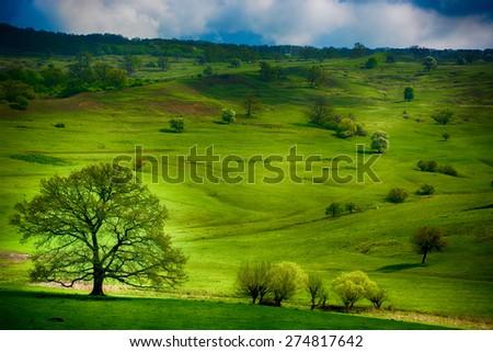 Green. Transylvanian hills on spring near Viscri. Dramatic interpretation.  - stock photo