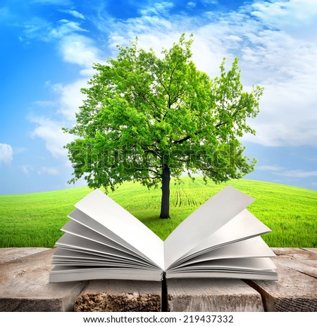 Green tree and opened book on the table - stock photo