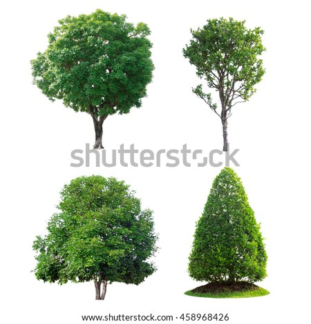 Green tree collection isolated on white background