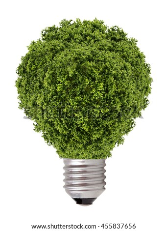 green tree growing out of a bulb,Green energy concept  - stock photo