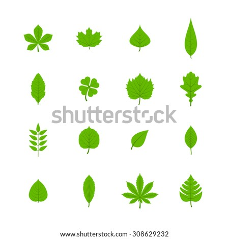 Green trees leaves flat icons set of oak aspen linden maple chestnut clover plants isolated  illustration