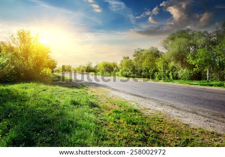 Green trees near asphalted road in sunny day - stock photo