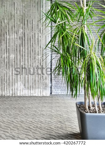Green tropical plant decorating a room with gray walls and floor.
