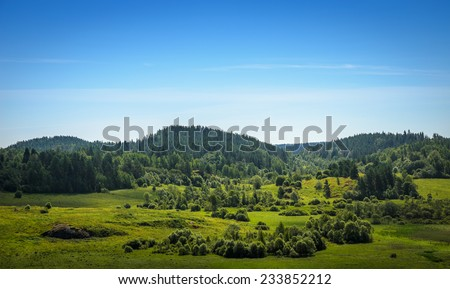green valley among the woods on the hills - stock photo