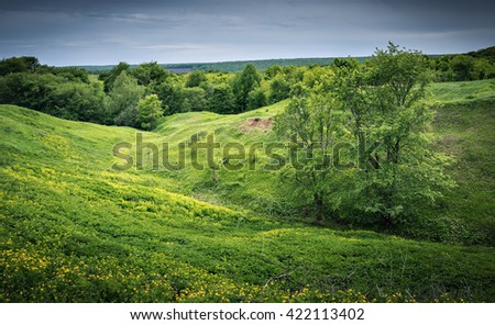 Green valley with a ravine in the countryside