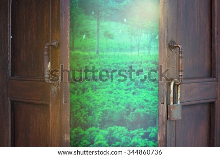 green view when open wood windows