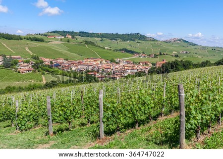 Green vineyards and small town on background under blue sky in Piedmont, Northern Italy. - stock photo