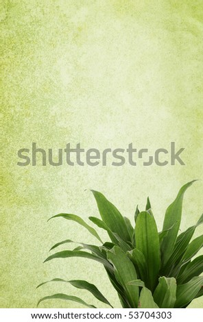 Green vintage background with a plant. Canvas texture. Copy-space. - stock photo
