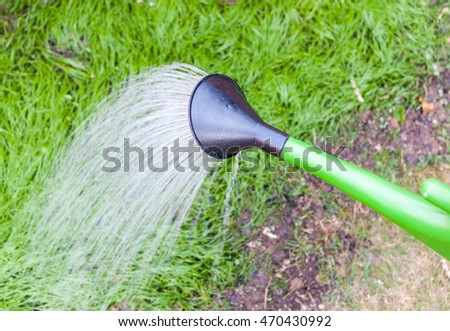 Green watering can watering newly grown grass