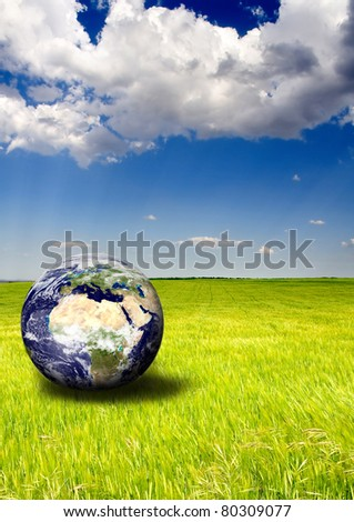 Green wheat field in a sunny spring day with an earth globe laying in the grass. - stock photo